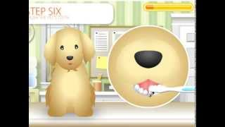 Bañando A Tu Mascota Pet Grooming Studio Juego De Cuidado De Mascotas Youtube