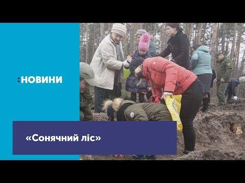 Телеканал UA: Житомир: Діти із Синдромом Дауна висадили «сонячний ліс»_Канал UA: ЖИТОМИР 21.03.19