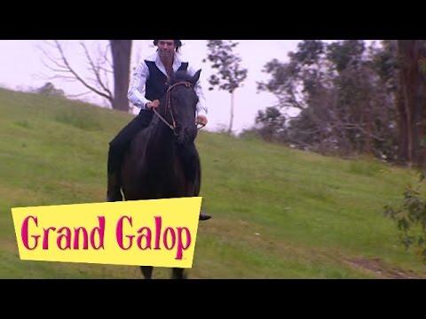 Grand Galop 211 - Libre comme l'air (Partie 2) | HD | Épisode Complet