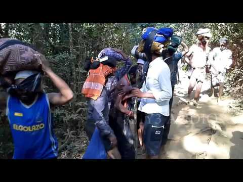 Sabarimala Traditional Trek Route | O swamy maa swamy lara... | LORD AYYAPPA SONGS