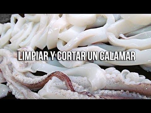 C mo limpiar y cortar un calamar youtube - Limpiar calamares pequenos ...