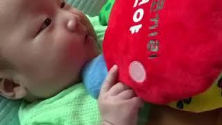 헝겊책 아기코끼리 코야 먹어치우는 생후 100일 아기