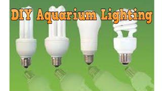 Best DIY Aquarium Lighting