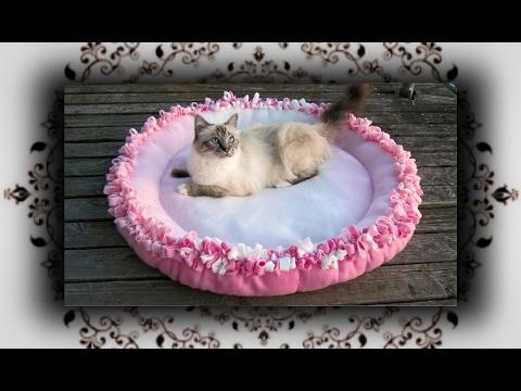 Katzen Kleidung Selber Machen – First Met