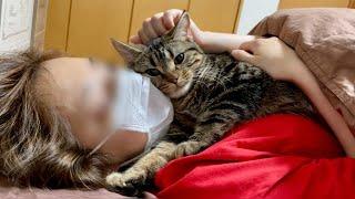 暑くて眠れない猫にクーラーをかけてあげた瞬間こうなりましたw