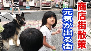 grandchild and #GermanShepherd dog #ジャーマンシェパード犬マック君...