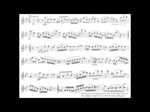 Schubert, Franz  Polonaise in B flat D.580 for violin + orchestra