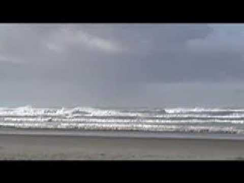 CALIFORNIA LOST & FOUND by Josh Schicker