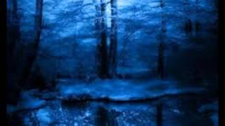 Magnum Bonum-Rädd Att Leva