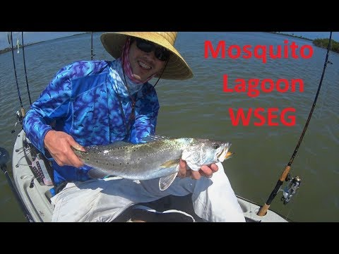 Mosquito Lagoon First Trip To WSEG