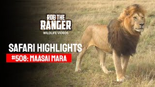 Safari Highlights #508: 09th & 10th October 2018 (Latest Sightings) (4K Video)