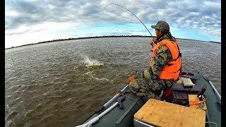 ЩУКИ МОНСТРЫ ЗА 10 КГ НА КАЖДОМ ЗАБРОСЕ!!Нормы вылова отдыхают! Трофейная рыбалка ,крупная щука.