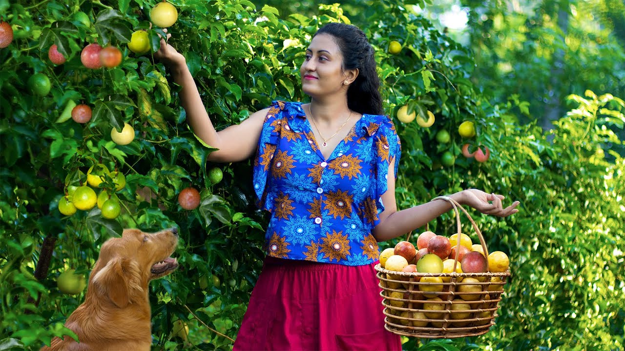 Lots of Passion fruits!!Sour or sweets?No matter.I made it in wonderful ways.|Poorna The nature girl