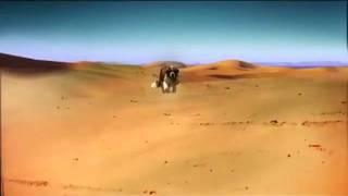 Abes Bagel Crisps Desert