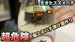 【超危険】日本酒の中に生きたスズメバチを入れて極上の酒を作る!!