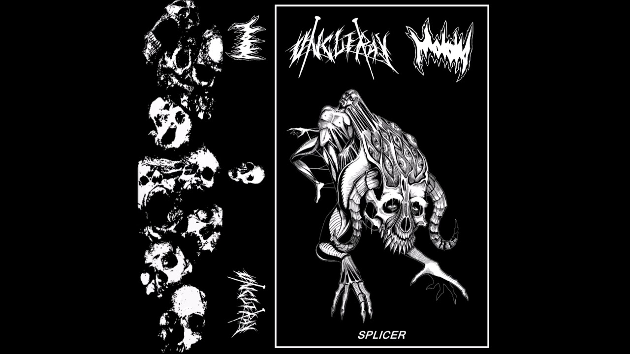 Download Uncle Ray / Malaria - Splicer (Split-2018) Full Album HQ (Powerviolence/Grindcore)