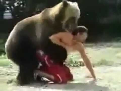 Игры с медведем. games with a bear