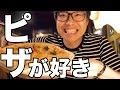 【長野】野尻湖の湖畔「ゲストハウス LAMP」に来た!