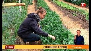 Спільний город – Вікна-новини – 17.04.2019