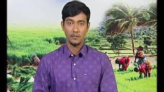 Pon Vilaiyum Bhoomi 24/02/2017