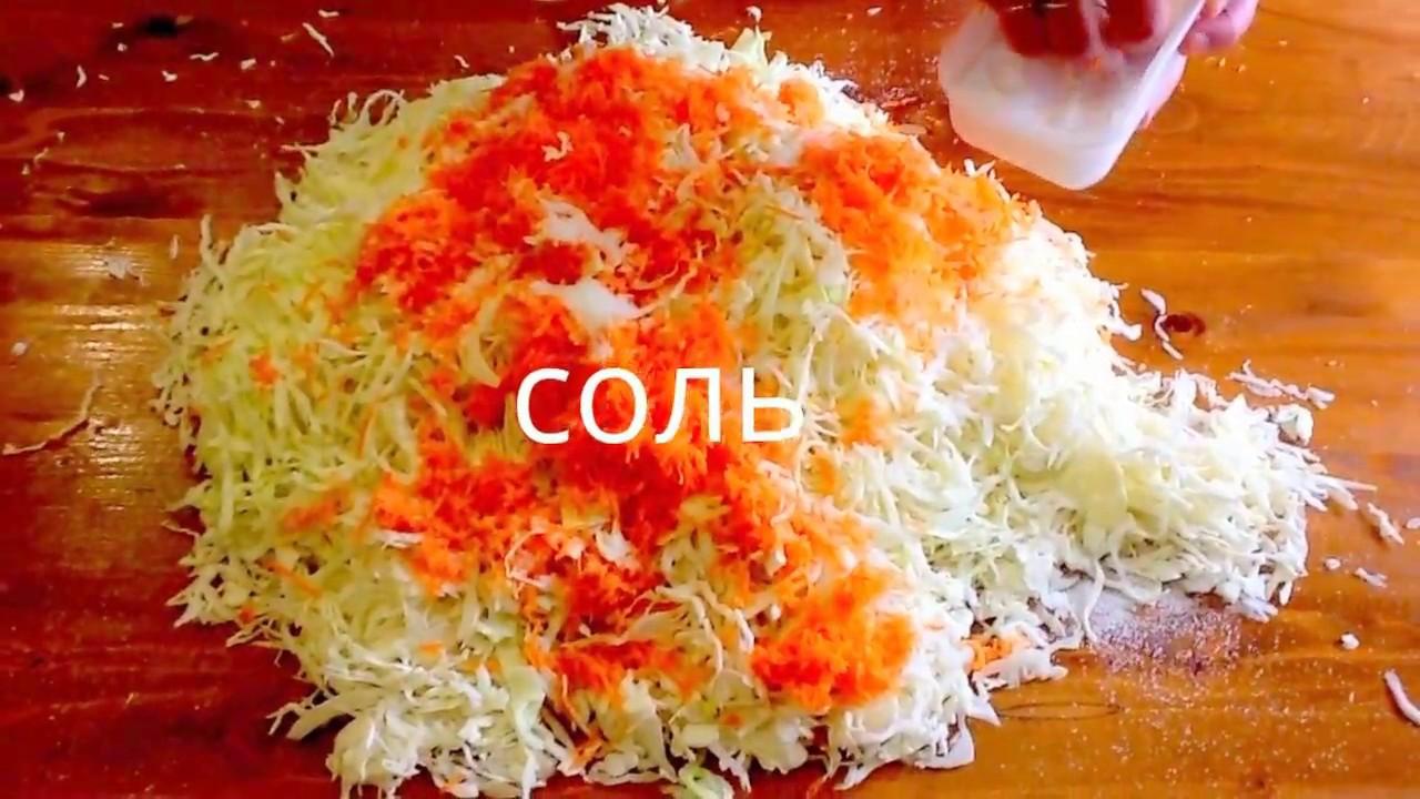 Как сделать быстро квашенную капусту фото 390