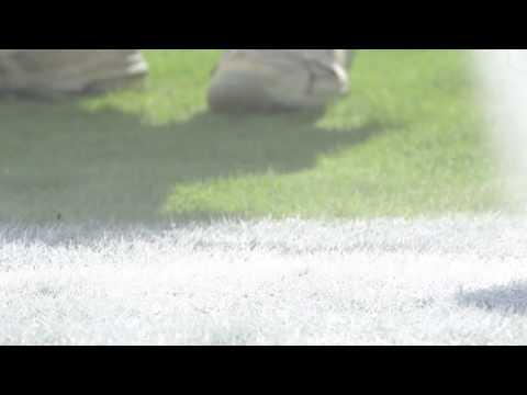 Neyland Stadium - Home Of The TENNESSEE VOLUNTEERS FOOTBALL Team