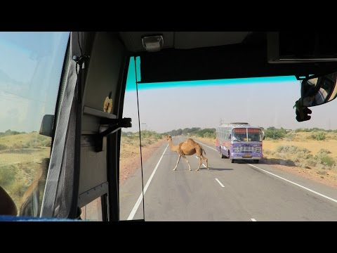 India - Rajasthan - From Mandawa to Bikaner - On the road