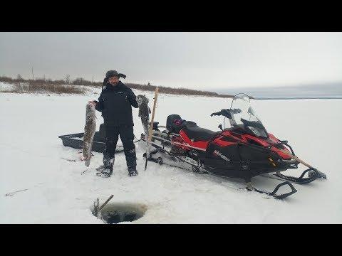 Отчёт с рыбалки 02.11.2019
