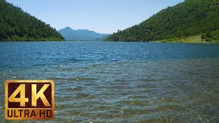 Gambar cover (4-Hour) Lake Sounds | Nature Relax Video in 4K - Coldwater lake at Mt. St. Helens Area