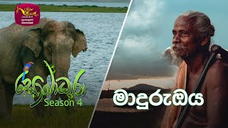 Sobadhara - Sri Lanka Wildlife Documentary | 2020-09-18 | Maduru Oya (මාදුරුඔය) Thumbnail