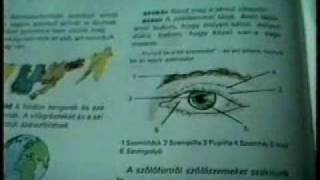 a látásromlás etiológiája röviden érzékszervi rendszerek látása