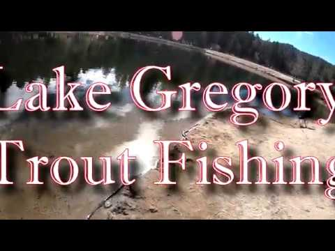 Trout Fishing @ Lake Gregory