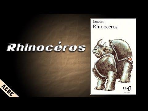 ACDC -XIV- Rhinocéros, d