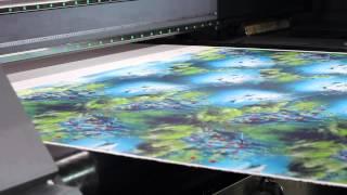 Выставка CITME 2014 - текстильные принтеры (комплексы) для прямой печати по ткани от DGI и Homer