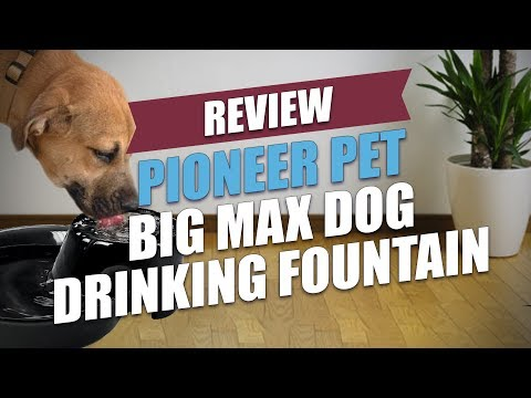 Pioneer Pet Big Max Dog Drinking Fountain Review