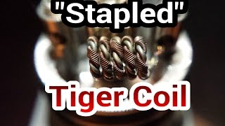 Stapled Tiger Coil