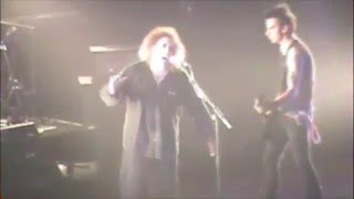 The Cure's Robert Smith sings with fan