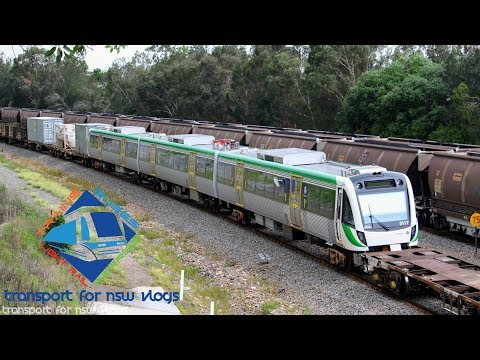 Transport for NSW Vlog No.1134 East Maitland part 2