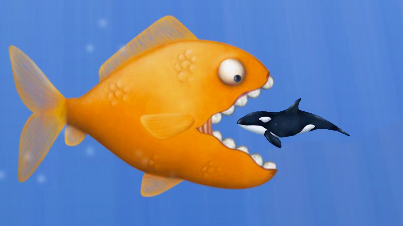 Eat fish and grow bigger tasty blue youtube for Game and fish