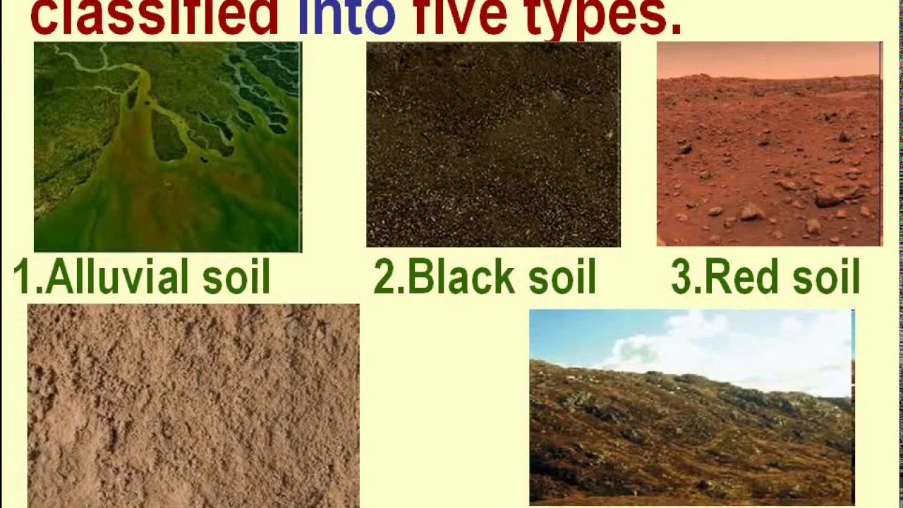 Types of soil alluvial images for 4 parts of soil