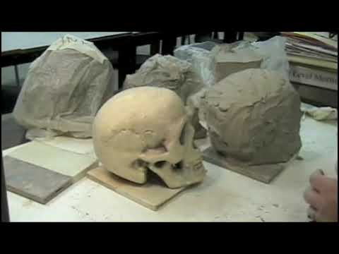 5 how to sculpt a clay skull