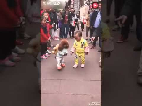 Dog /собака танцуют 🐩🐩👯👯