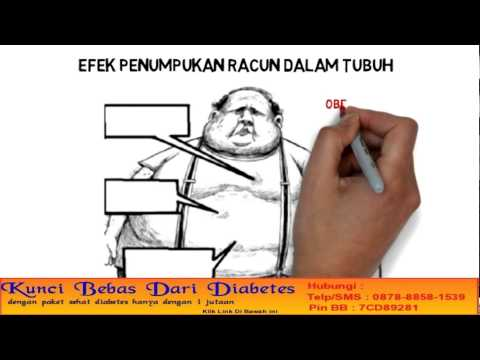 Gejala Diabetes Melitus Tipe 2 Dan Pengobatan Diabetes Dengan Obat Herbal Diabetes