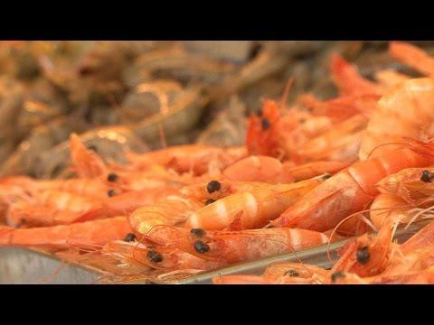 Crevettes : les nouvelles stars de la grillade - enquète reportage