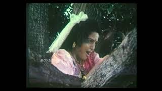Durgai Viratham Full Movie Part 3