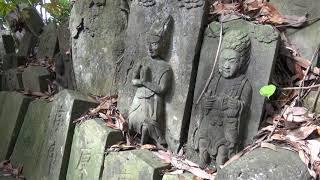 銚子市 都波岐神社