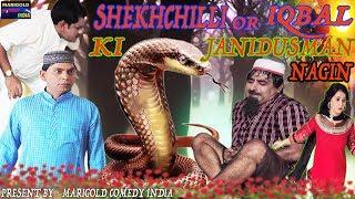 शेखचिल्ली और इक़बाल की जानिदुस्मन नागिन || shekhchilli new comedy 2019