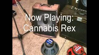 Cannabis Rex, Wizard, Private Jack, Red White & Blues Guitar Speaker Comparison (clean)