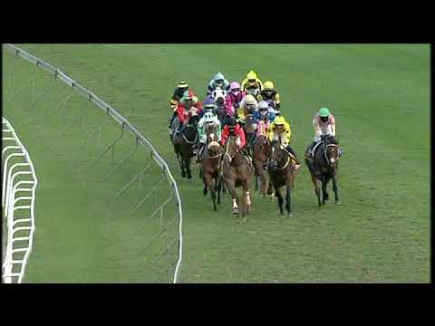 Download 20200916 Hollywoodbets Greyville express clip Race 9 won by TREASURED PEARL