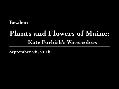 Plants and Flowers of Maine: Kate Furbish's Watercolors